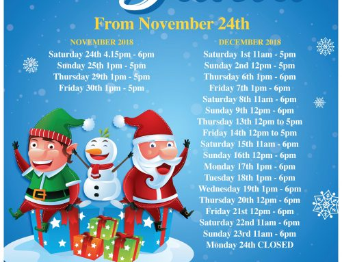 Santa Visiting Hours & Price List 2018